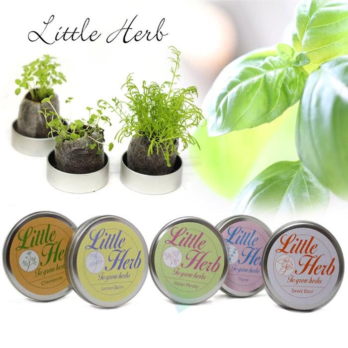リトルハーブ 缶栽培セット
